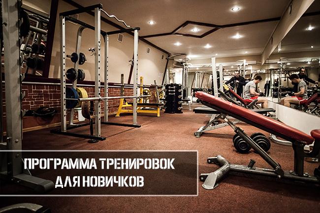 Программа тренировок для новичков